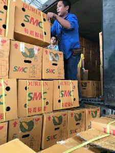 進口水果批發商