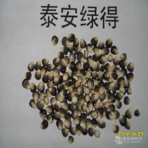 富含黑色素糯性黑玉米干粒