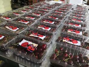 果蔬保鲜气调包装机包装效果展示
