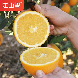 江山碧 江西赣南脐橙 新鲜水果 甜橙10斤批发包邮