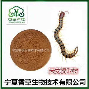 蜈蚣提取物供应商天龙提取物10:1厂家中药材干蜈蚣粉 水解天龙粉