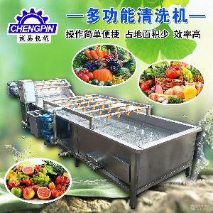 臭氧去农残洗菜机 蔬菜水果清洗机 厂家直销