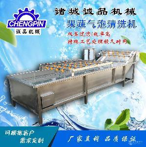全自动果蔬气泡清洗机 厂家现货 花生清洗机 高压喷淋自动洗菜机