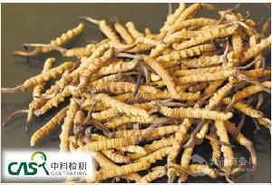 广州中科检测 虫草酸检测