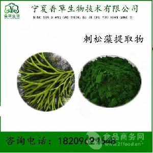 刺松藻提取物20:1 刺海松膳食纤维 刺松藻粉速溶粉全水溶宁夏直销