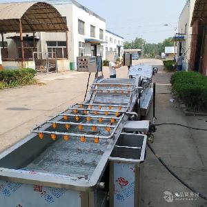 小龙虾加工设备厂家