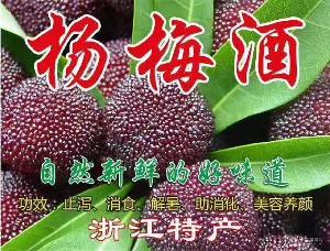 蘭溪馬澗特產農家自釀純糧土燒高粱酒泡制楊梅酒