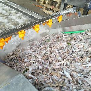 供应不锈钢洗鱼机 气泡式海鲜清洗设备 全自动黄花鱼气泡清洗机