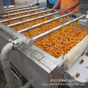 全自动果蔬清洗设备 番茄清洗流水线 圣女果气泡清洗机