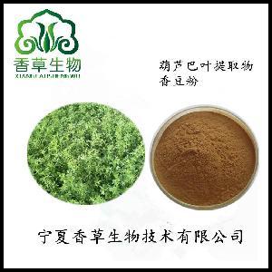 苦豆子提取物 宁夏香苦豆天然香料调味料 葫芦巴叶粉宁夏厂家
