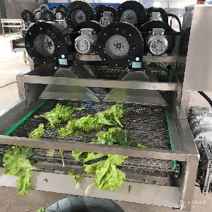 水果清洗专用风干机 全自动果蔬加工清洗风干线价格