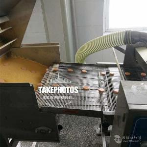 博康食品上浆机 南瓜饼地瓜丸专用上浆设备 可定制
