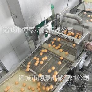 正品精选 香芋地瓜丸淋浆机 对产品表面完全裹涂