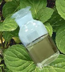 冬青油 水杨酸甲酯 冬绿油Methyl salicylate