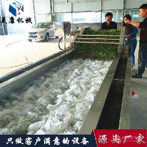全自动苹果清洗机 水果气泡清洗流水线 专业生产外贸出口加工设备