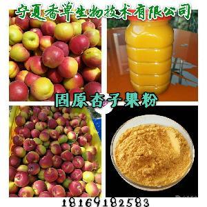 杏子果汁 原浆 宁夏厂家 固原当地红梅杏果浓缩汁价格