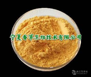 固原杏子果肉粉 纯粉批发 质量保证 彭阳红梅杏汁粉厂家