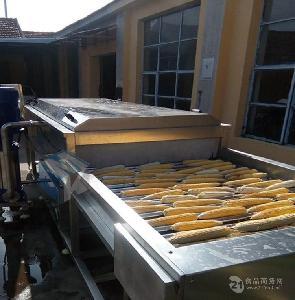 即食玉米专用清洗机 黑龙江糯玉米清洗设备价格