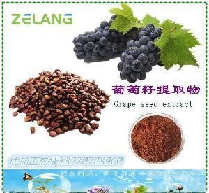 供葡萄籽提取物原花青素 厂家可以代加工固体饮料