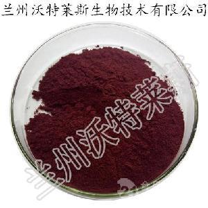 黑枸杞提取物  原花青素25% 黑枸杞果粉