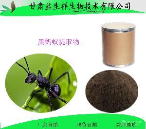 兰州  黑蚂蚁膳食纤维   种植基地    量大从优