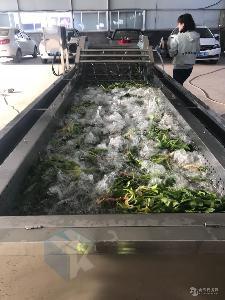 大型自动化菠菜清洗漂烫流水线 辣白菜加工专用清洗设备