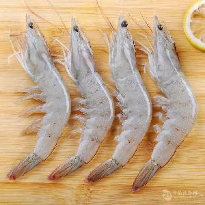 水凍南美白對蝦4050批發