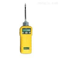 PGM-7600泵吸式有機蒸氣檢測儀